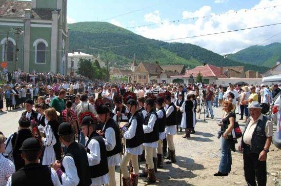 Festivalul-Bujorului-din-Gura-Raului-(-Sibiu)-bujorul-de-munte(1)