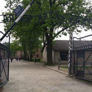 Auschwitz o istorie care nu trebuie uitata